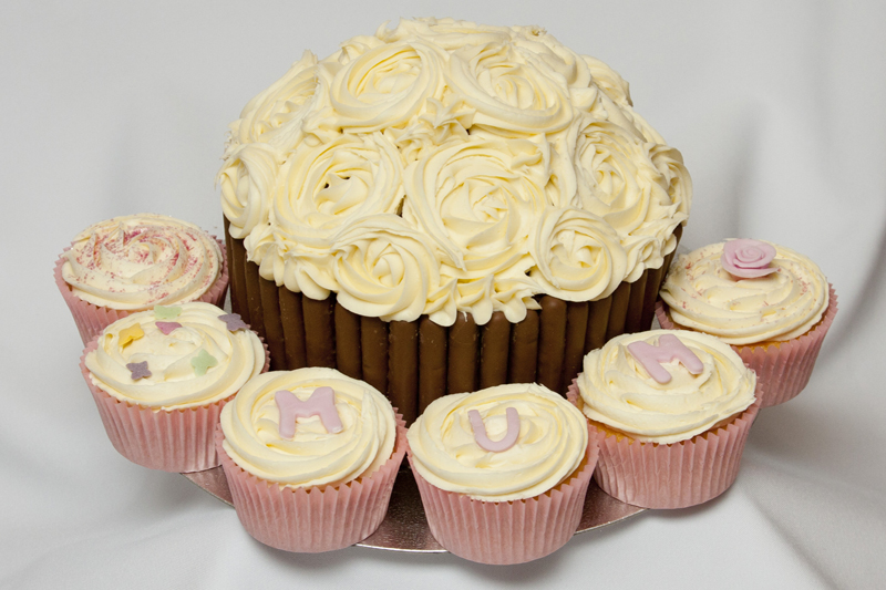 Mother's Day Giant Cupcake and standard Cupcakes